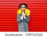 fashion autumn young woman in... | Shutterstock . vector #749731528