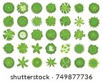 various green trees  bushes and ... | Shutterstock .eps vector #749877736