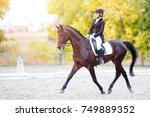 Equestrian Sport Event At Fall...