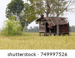 the old hut in rice field  thai ... | Shutterstock . vector #749997526