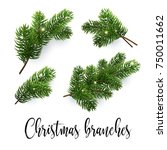 set of fir branches. christmas... | Shutterstock .eps vector #750011662