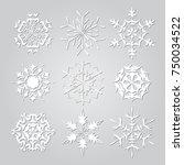 snowflakes set. background for...   Shutterstock .eps vector #750034522