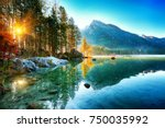 fantastic autumn sunrise of... | Shutterstock . vector #750035992