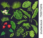 tropical flowers and leaves... | Shutterstock .eps vector #750073696