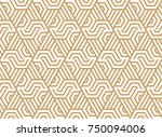 abstract geometric pattern with ... | Shutterstock .eps vector #750094006
