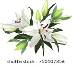 illustration with light lily... | Shutterstock .eps vector #750107356