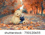 cute little boy in autumn park... | Shutterstock . vector #750120655