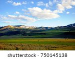 Lamar valley in Yellowstone National Park, with Lamar river, herds of bison grazing in green fields against a background of snow capped mountains and blue sky with white clouds