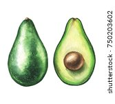 watercolor avocado pair. hand... | Shutterstock . vector #750203602