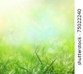 spring or summer season... | Shutterstock . vector #75022240