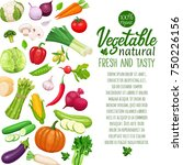page design with vector... | Shutterstock .eps vector #750226156