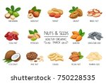 set vector icons nuts and seeds.... | Shutterstock .eps vector #750228535