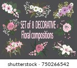 set of floral compositions.... | Shutterstock .eps vector #750266542