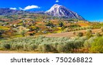 colorful fields of vineayrds... | Shutterstock . vector #750268822