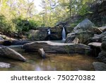 Waterfalls at Cheaha State Park in Alabama, USA