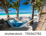 perfect tropical beach with... | Shutterstock . vector #750362782