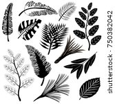 black icons of leaves of... | Shutterstock .eps vector #750382042