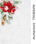christmas decoration with... | Shutterstock . vector #750385696