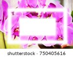 orchid flower picture for design   Shutterstock . vector #750405616
