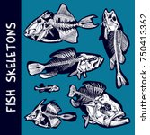 set of a fish skeletons. vector ... | Shutterstock .eps vector #750413362