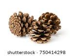 pine cones closeup | Shutterstock . vector #750414298