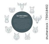 wild forest animals  brochure... | Shutterstock .eps vector #750418402
