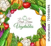 vegetables and fresh farm... | Shutterstock .eps vector #750448696