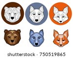 a set of images of heads of... | Shutterstock .eps vector #750519865