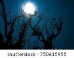 the haunted tree | Shutterstock . vector #750615955