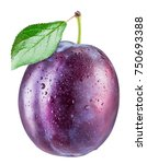 plum with water drops. file... | Shutterstock . vector #750693388