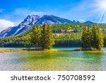 golden autumn in canada. the... | Shutterstock . vector #750708592
