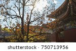 china   beijing   november 3 ...   Shutterstock . vector #750713956