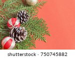 selective focus on seed and... | Shutterstock . vector #750745882