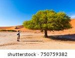 tourist taking photo at... | Shutterstock . vector #750759382