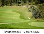 Woman Golfer In Green Landscap...