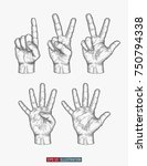 hand drawn hands set. one  two  ... | Shutterstock .eps vector #750794338