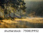 Landscape With Fog In The...