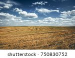 field on the background of the... | Shutterstock . vector #750830752