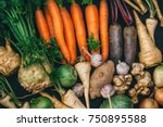 root crops  carrots  parsley... | Shutterstock . vector #750895588