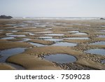 landscape of tidepools on a... | Shutterstock . vector #7509028