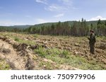 Small photo of Finding a position using a gps device. A forest warden standing on the hillside and looking in the navigation on the GPS in the background a field of a forest nursery with plantings of pine and cedar.