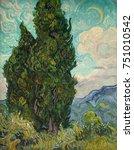Cypresses  By Vincent Van Gogh...