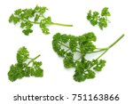 parsley isolated on a white... | Shutterstock . vector #751163866