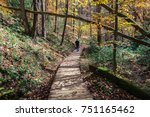 a path in the forest  | Shutterstock . vector #751165462