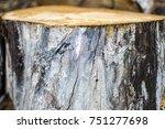 pile of old birch firewood... | Shutterstock . vector #751277698