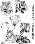 set of vector drawings on the... | Shutterstock .eps vector #751305862