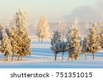 Small photo of winter, winter-tide, winter-time, hibernate, he coldest season of the year, in the northern hemisphere from December to February and in the southern hemisphere from June to August.