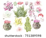 set with watercolor cacti and... | Shutterstock . vector #751389598