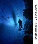 a diver silhouetted against the ... | Shutterstock . vector #751462096