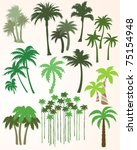 palm tree collection   Shutterstock .eps vector #75154948